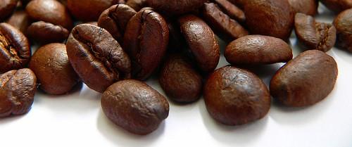 caffeine taj india